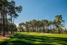 Photo courtesy of Poppy Hills