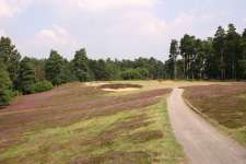 The strong par three 10th