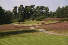 The 4th is the first standout par three at Swinley Forest